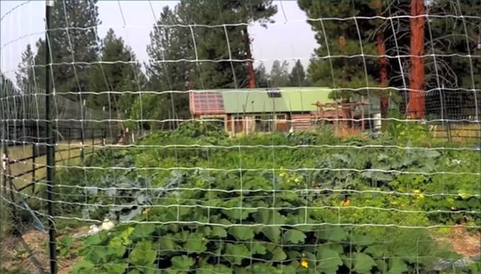 Solar cabin in Montana