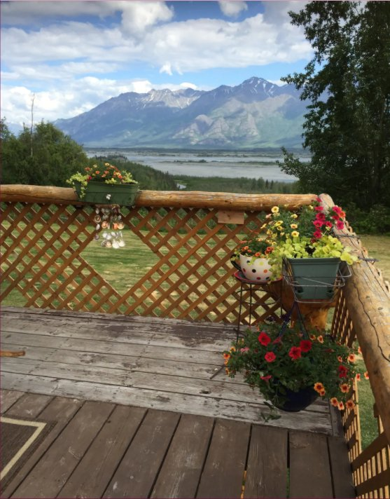Log cabin views