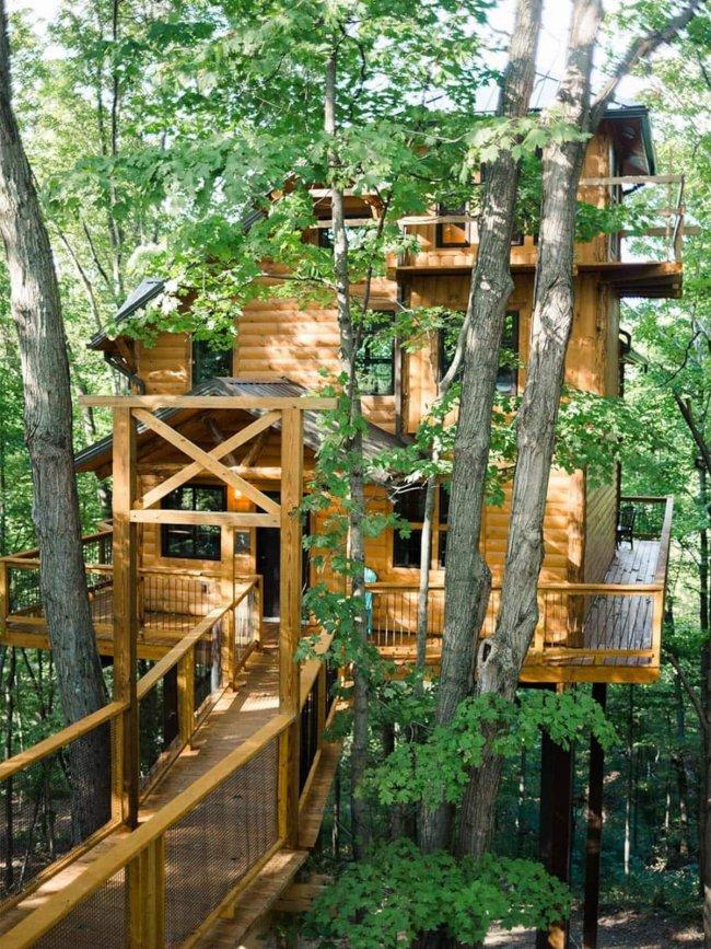 Luxury tree house
