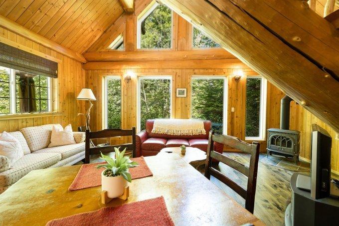 Forest log cabin